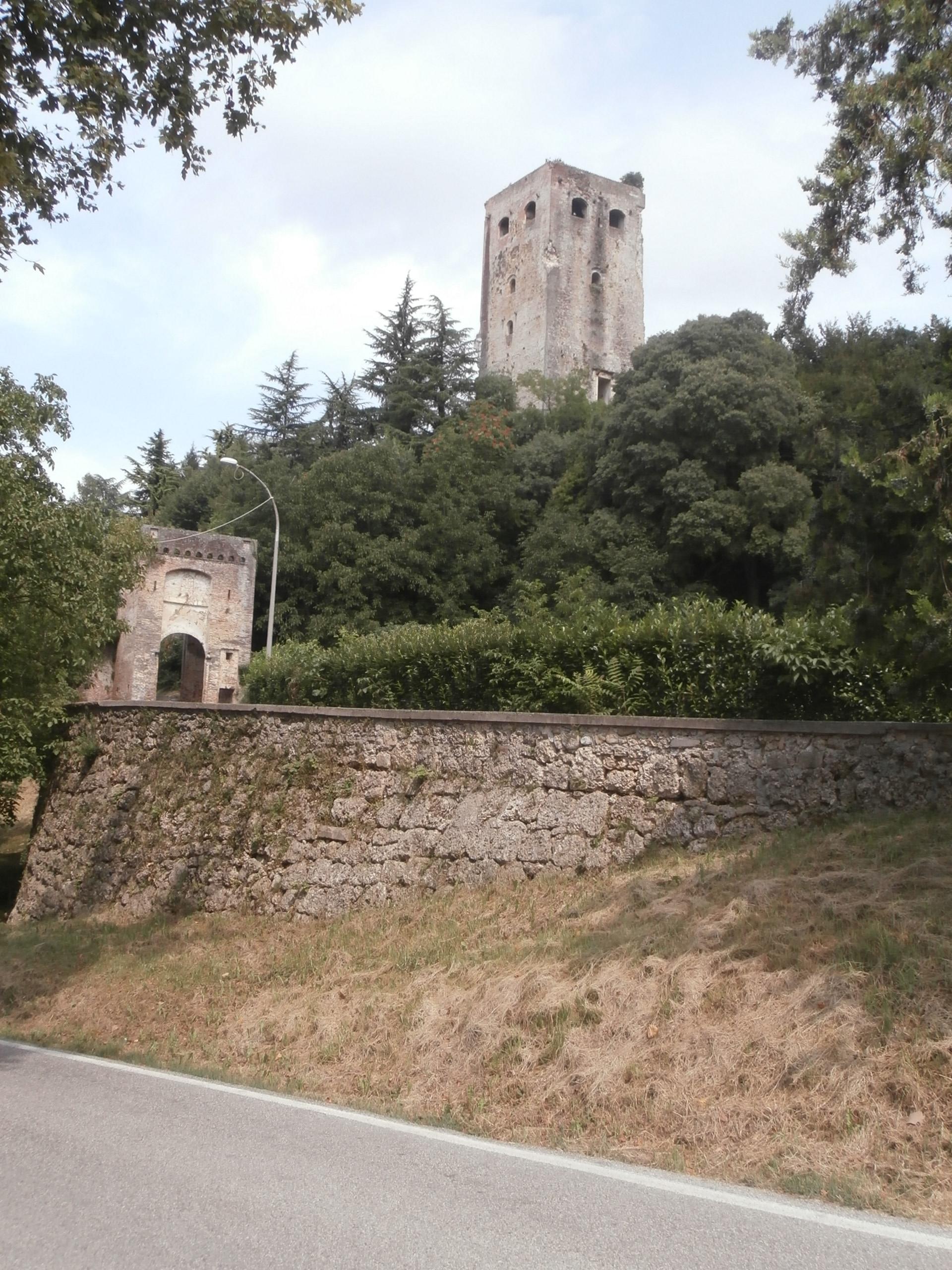 P8106958 I castelli (Collalto  Susegana  Conegliano  Castelbrando  Zumelle)