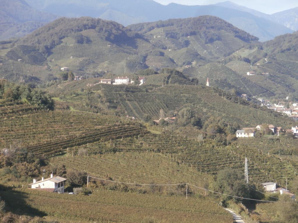P9147264 1024x768 Le colline del Prosecco