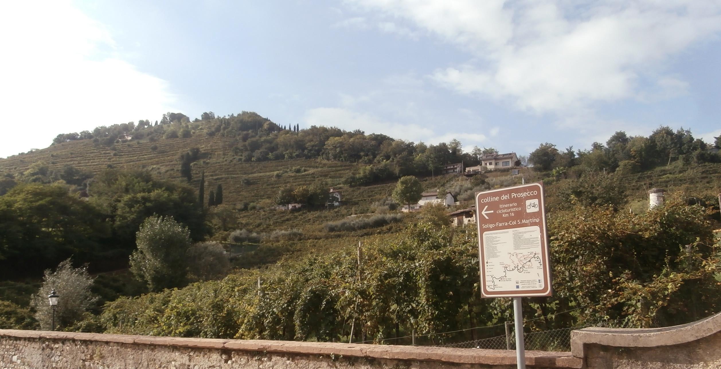 P9137098 e1424294340567 La collina del San Gallo