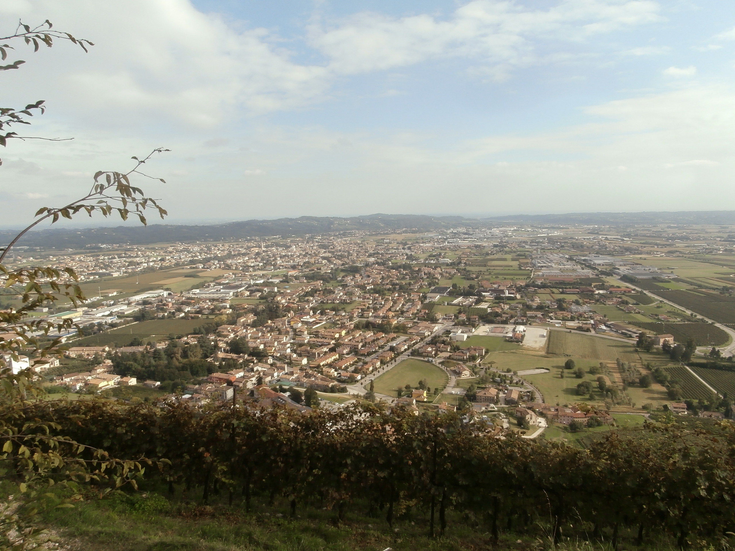 P9137107 La collina del San Gallo