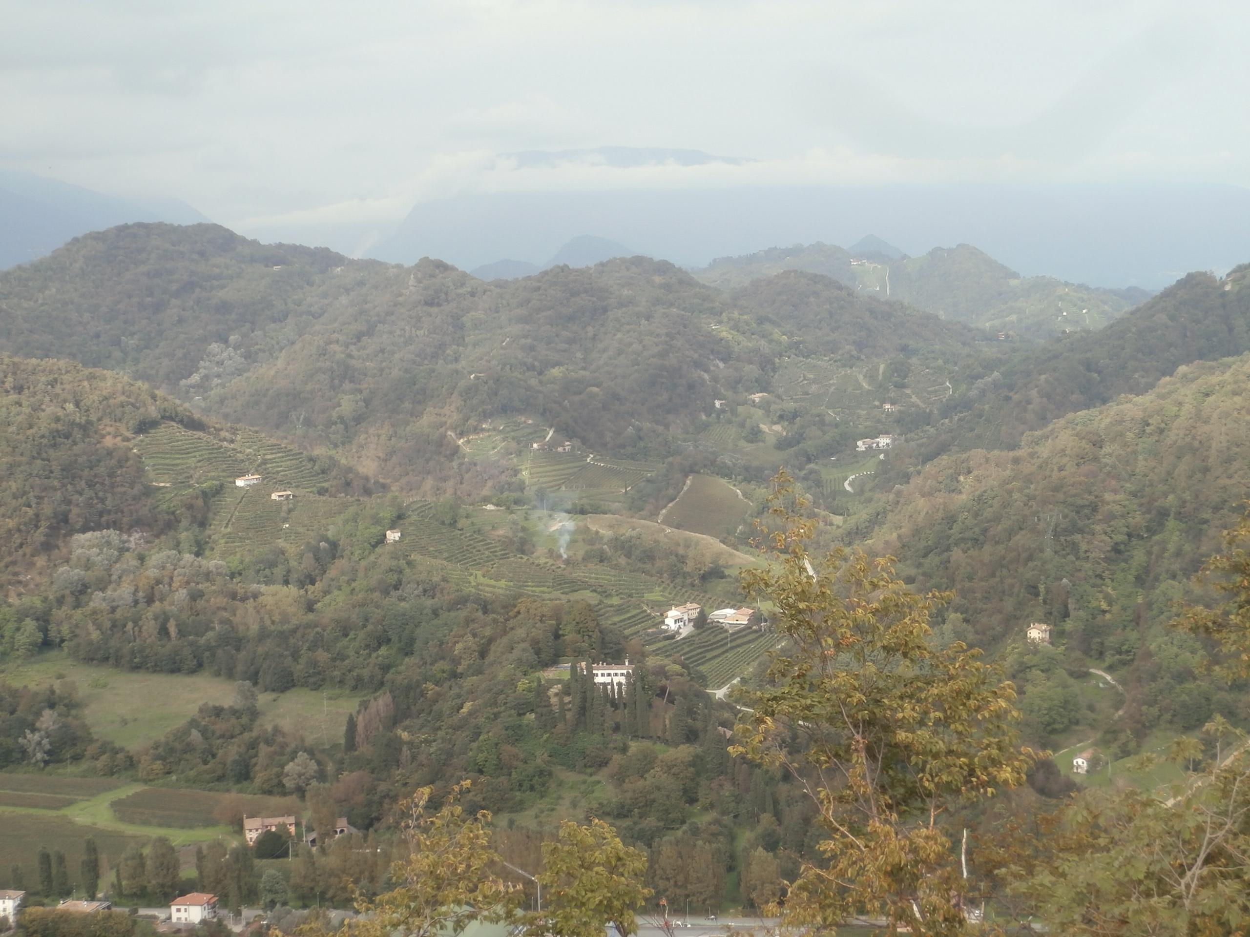 P9137114 La collina del San Gallo